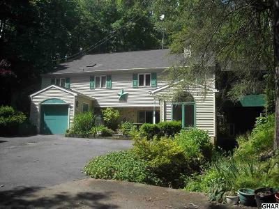 Duncannon Single Family Home For Sale: 60 Hoffman Rd