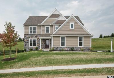 Harrisburg Single Family Home For Sale: 7037 Beaver Spring Road