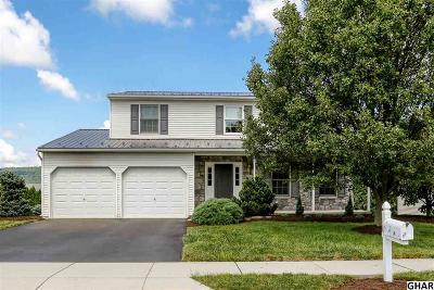 Enola Single Family Home For Sale: 19 Willow Way Dr