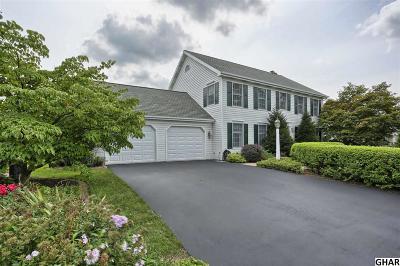 Hershey Single Family Home For Sale: 360 Vesper Road