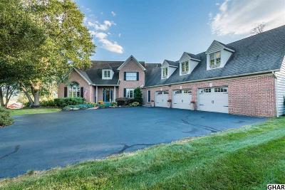 Carlisle Single Family Home For Sale: 1786 Rockledge Drive