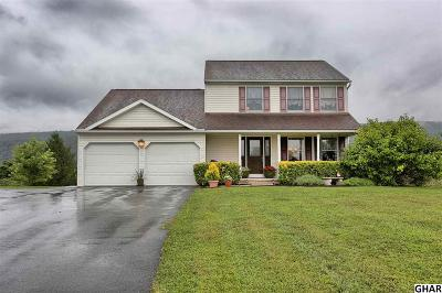 Duncannon Single Family Home For Sale: 109 Barrick Drive