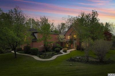 Harrisburg Single Family Home For Sale: 462 Blue Mountain Parkway
