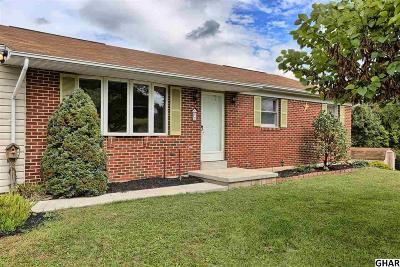 Duncannon Single Family Home For Sale: 2 Frisch Drive