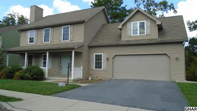 Hummelstown Single Family Home For Sale: 68 Sweet Arrow Dr