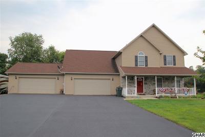 Carlisle Single Family Home For Sale: 17 Nicholas Drive
