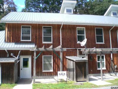 Duncannon Single Family Home For Sale: 63 Petersburg Ln