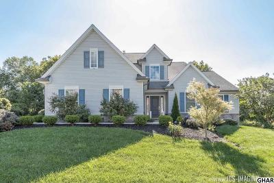 Mechanicsburg Single Family Home For Sale: 6209 Crofton Court