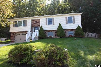 Mount Holly Springs Single Family Home For Sale: 24 Yankee Dr