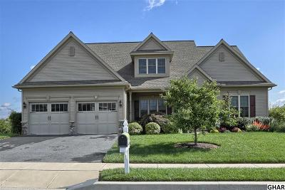 Hummelstown Single Family Home For Sale: 160 Scenic Ridge