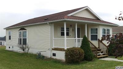 Carlisle Single Family Home For Sale: 119 Oriole Drive