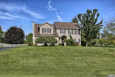 Hummelstown Single Family Home For Sale: 991 Overlook Drive
