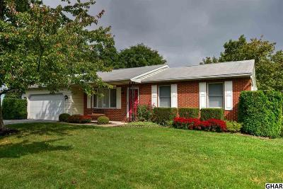 Harrisburg Single Family Home For Sale: 6256 Harding Ave
