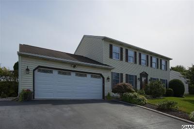 Harrisburg Single Family Home For Sale: 6325 Lehigh Ave