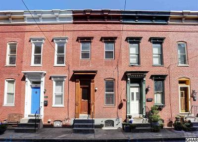 Harrisburg Single Family Home For Sale: 1635 Susquehanna Street
