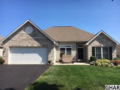 Mechanicsburg Single Family Home For Sale: 60 Northview Dr