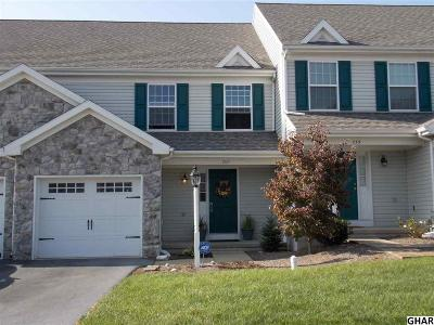 Harrisburg Single Family Home For Sale: 737 Winding Lane