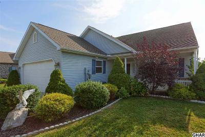 Shippensburg Single Family Home For Sale: 29 Lantern Lane