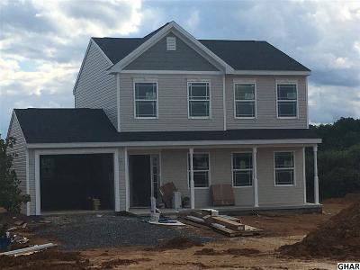 Shippensburg Single Family Home For Sale: 25 W Clarissa Dr
