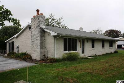 Duncannon Single Family Home For Sale: 300 Montebello Farm Road