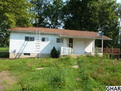 Duncannon Single Family Home For Sale: 204 Towpath Road