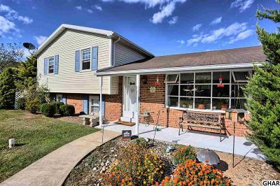Duncannon Single Family Home For Sale: 1 Mourning Dove Way