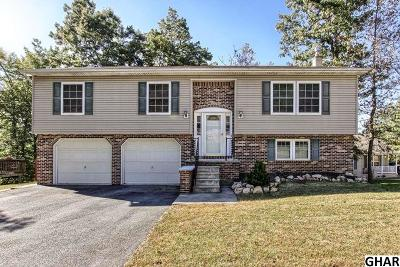 Mount Holly Springs Single Family Home For Sale: 43 Liberty Drive
