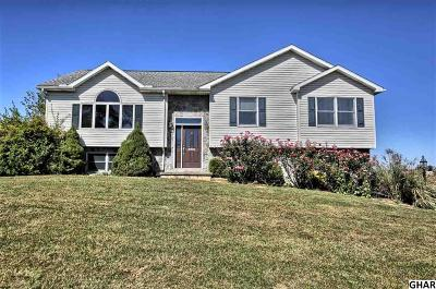 Newville Single Family Home For Sale: 1609 Walnut Bottom Road