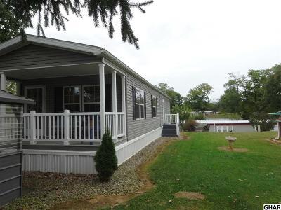 Shippensburg Single Family Home For Sale: 93 Shippensburg Mobile Estate