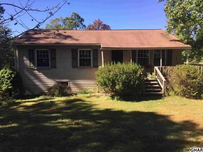Duncannon Single Family Home For Sale: 730 Pine Hill Road