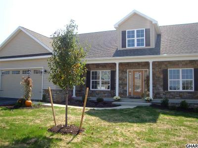 Mechanicsburg Single Family Home For Sale: 841. Tamanini Way
