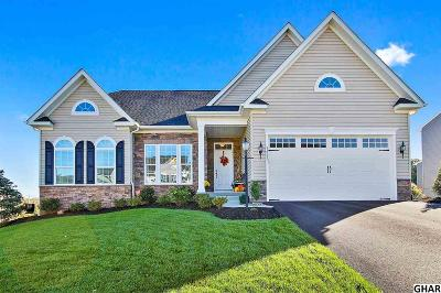 Harrisburg Single Family Home For Sale: 3923 Seattle Slew Drive