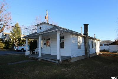 Harrisburg Single Family Home For Sale: 4819 Orchard Street