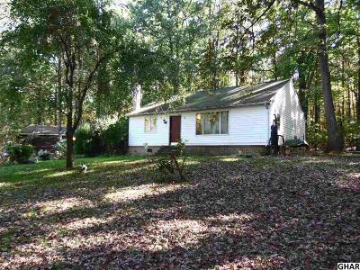 Boiling Springs Single Family Home For Sale: 611 Gutshall Rd