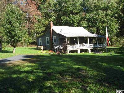 Duncannon Single Family Home For Sale: 34 Notch Road