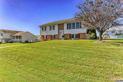 Shippensburg Single Family Home For Sale: 324 Holswart Drive