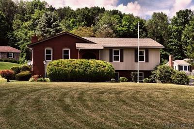 Single Family Home For Sale: 119 Wanda D Avenue