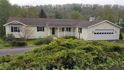 Single Family Home For Sale: 131 Jill Renee Drive