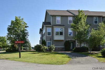 Hidden Valley Condo/Townhouse For Sale: 1100 Forbes Lane