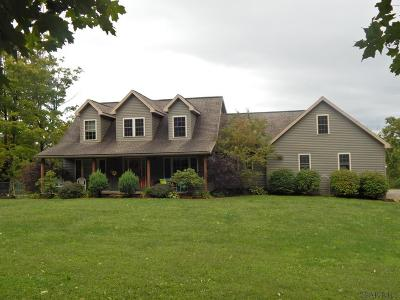 Single Family Home For Sale: 275 Bashore Road