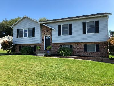 Somerset  Single Family Home For Sale: 1241 Terrilin Dr