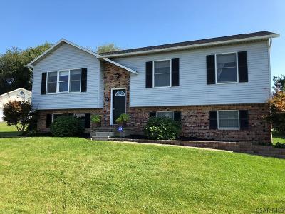 Single Family Home For Sale: 1241 Terrilin Dr