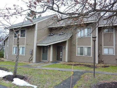 Hidden Valley Condo/Townhouse For Sale: 1210 Forbes Lane