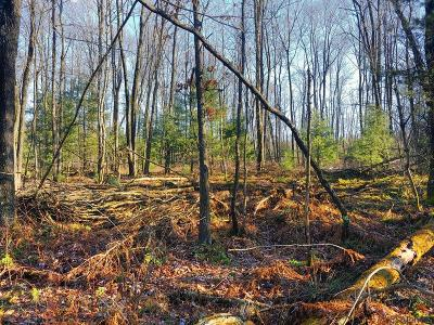 somerset Residential Lots & Land For Sale: Lot # 3 Stepping Stone