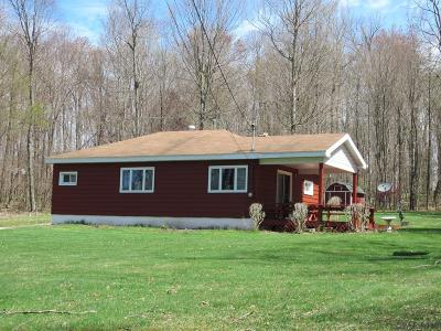 Single Family Home For Sale: 2396 Copper Kettle Hwy.