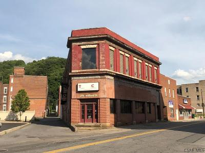 Commercial For Sale: 219 Bedford Street