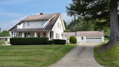 Single Family Home For Sale: 880 W Main St