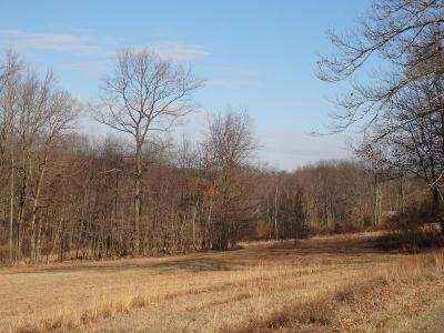 Bloomsburg Residential Lots & Land For Sale: Lot #4 Scotch Valley