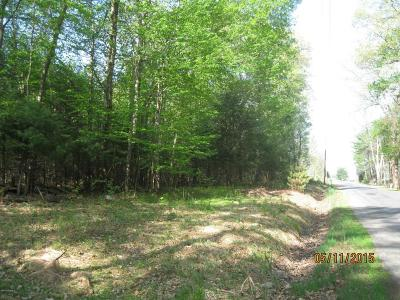 Bloomsburg Residential Lots & Land For Sale: 4.05 Acres Mountain Shadow Lane