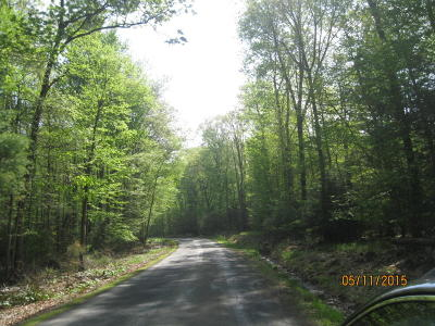 Bloomsburg Residential Lots & Land For Sale: 4.77 Acres Mountain Shadow Lane